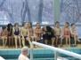 Seepferdchengruppe
